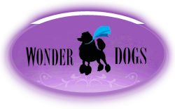 Wonder Dogs | Mobile Grooming Spa